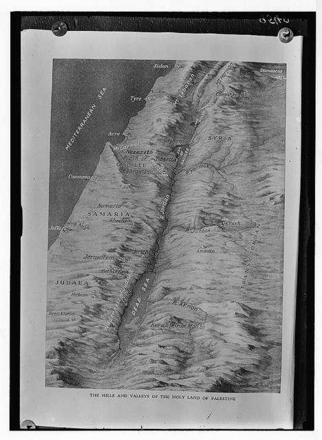 Relief map of Palestine.