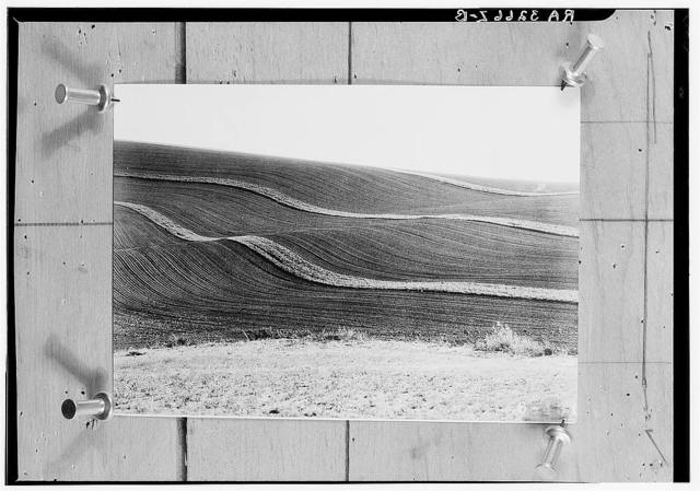Strip-cropping to convert damage done by erosion