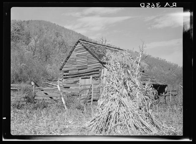 Barnyard at Old Rag. Shenandoah National Park, Virginia