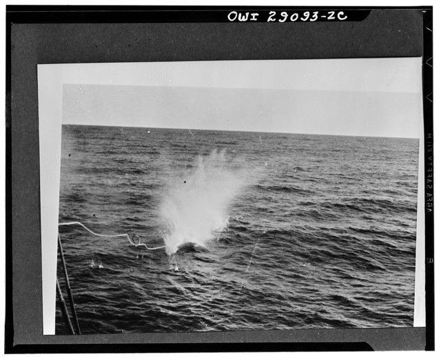 Bomb explodes on humpback. Explosion of bomb on head of harpoon marks the end of the trail for another humpbacker. The manila line may be seen, but the force of the explosion has hidden the whale