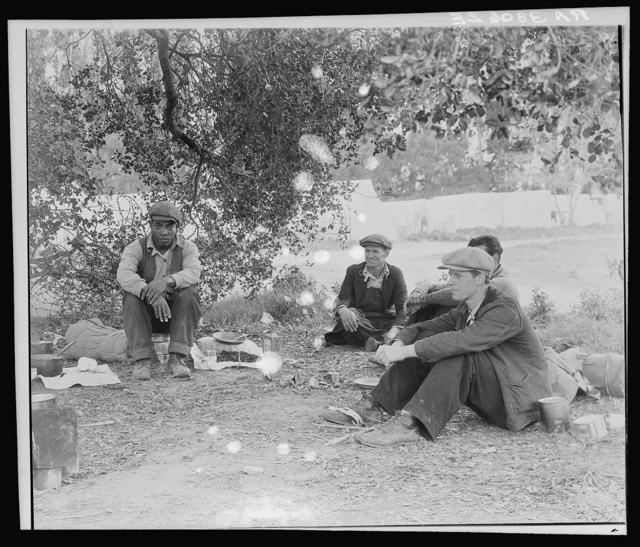 Camp of single men by the roadside. They have come in to work in the pea fields. Nipomo, California