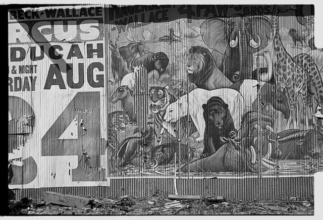 Circus poster, Smithland, Kentucky