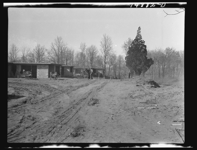 Hightstown, New Jersey. Progress photograph taken during construction of the Jersey homesteads, a U.S. Resettlement Administration project