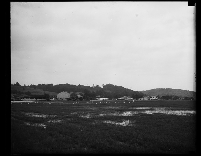 It rained at Bolling Field. Several successive days of rain in Washington turned Bolling field, the military airport, into a semi-marsh which attracted the interest of passing crane, which can be seen here resting in the water on the field. No damage was reported, although extensive preparations were made to handle aircraft in the event of flood, 9/6/35