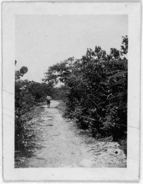 [Man walking down road, at a distance, possibly from the visit by Alan Lomax and Mary Elizabeth Barnicle to Andros Island in the Bahamas]
