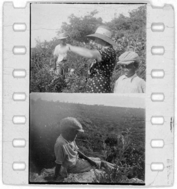 [Mary Elizabeth Barnicle (first frame) and other unidentified people, probably from Georgia, Florida and Bahamas expedition, 1935]