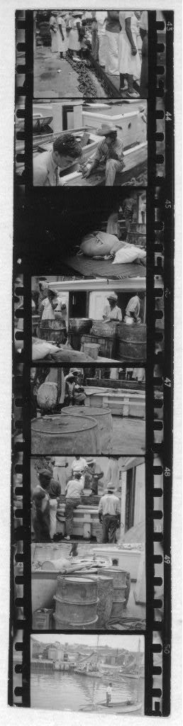 [Nassau harbor, people on docks(?), Alan Lomax sitting near boat at dock(?), from Georgia, Florida and Bahamas expedition, 1935]