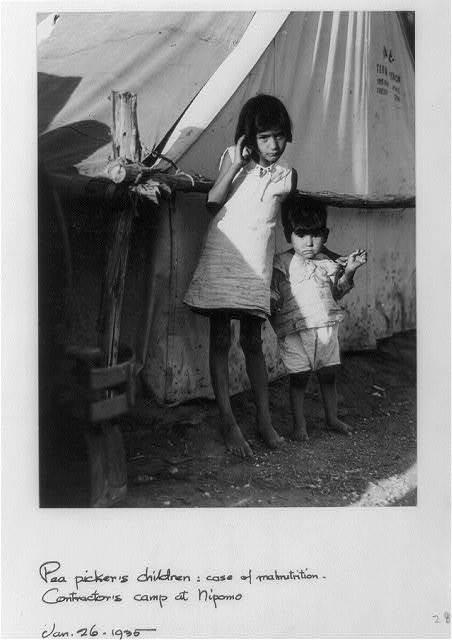 Pea picker's children: case of malnutrition. Contractor's camp at Nipomo