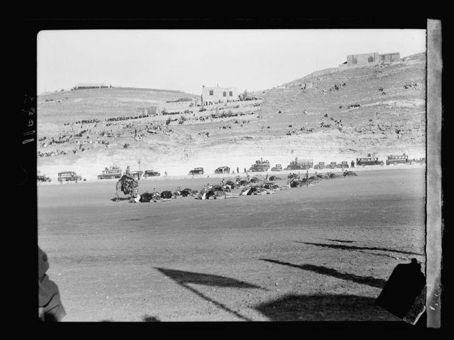 Prince Emir Saud's visit to Emir Abdullah in Amman, Transjordan. Camel Corps of Arab Legion, camel drill