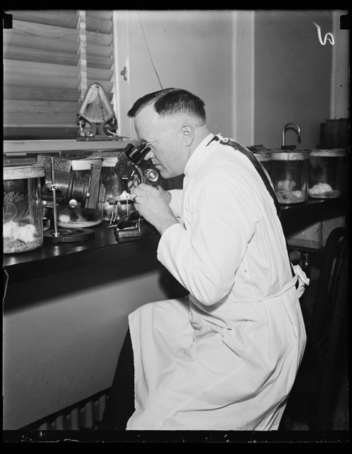 Public Health Surgeon. Dr. Charles Armstrong, Public Health Surgeon and Specialist on virus diseases, photographed in the laboratory in Wash. D.C. 10/29/35