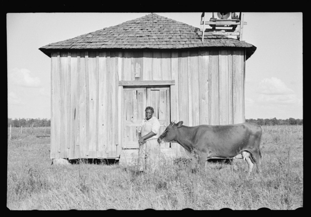 "Sharecropper, Pulaski County, Arkansas, ""Mother Lane"""