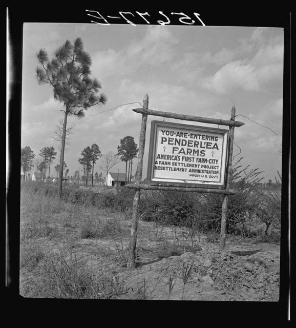 [Sign for Penderlea Farms, North Carolina]