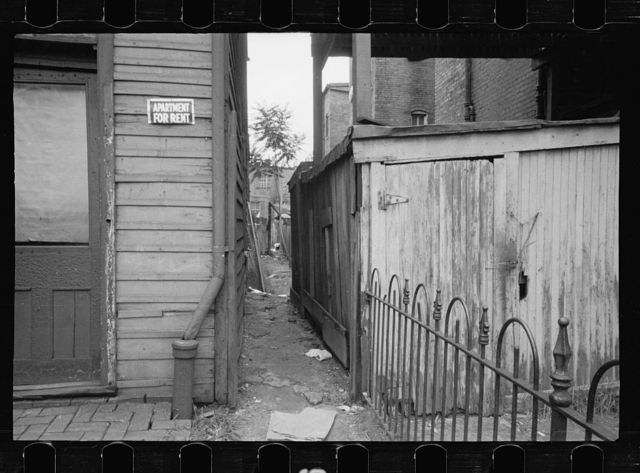 Slum alleyway, Washington, D.C. Houses in background have outside toilets and water supply
