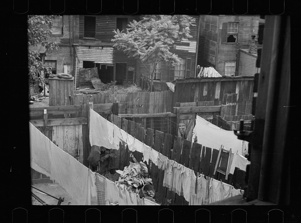 Slum backyard, Washington, D.C.