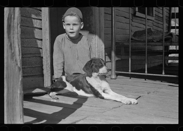 Son of Fannie Corbin, Shenandoah Natlional Park, Virginia