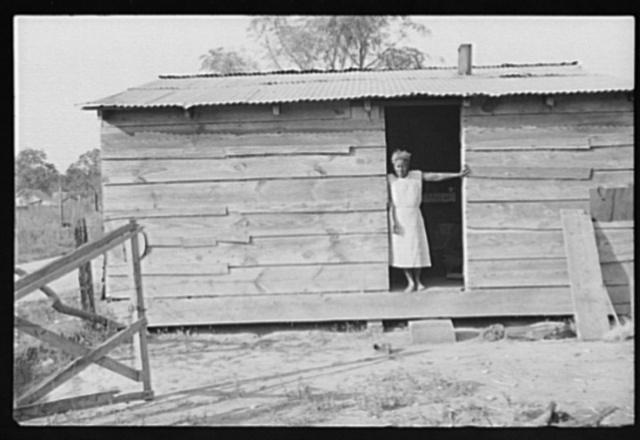 Strawberry grower's shack, Hammond, Louisiana