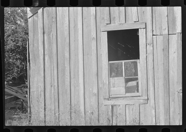 Strawberry picker's home, Hammond, Louisiana