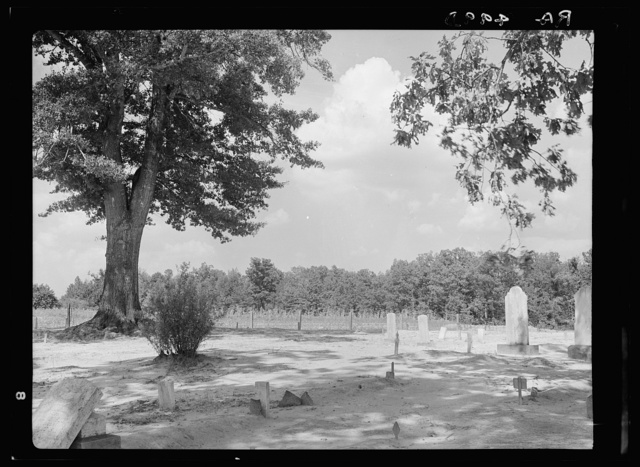 Tenant farmers' cemetery. Mississippi