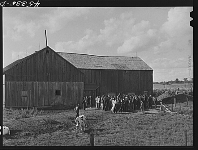 The Pine Camp military area near Watertown, New York, which was expanded under FSA (Farm Security Administration) supervision. Auctioning off a dairy herd on the Ingalls farm near Antwerp, New York