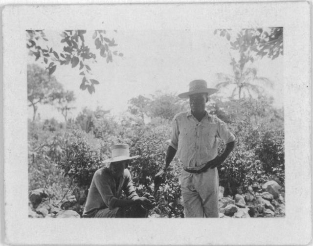 [Two men, one sitting, one standing, possibly from the visit by Alan Lomax and Mary Elizabeth Barnicle to Andros Island in the Bahamas]
