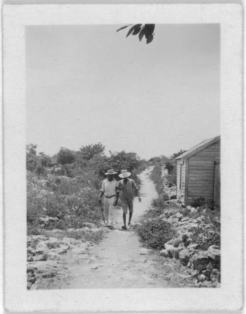 [Two men walking down road, possibly from the visit by Alan Lomax and Mary Elizabeth Barnicle to Andros Island in the Bahamas]