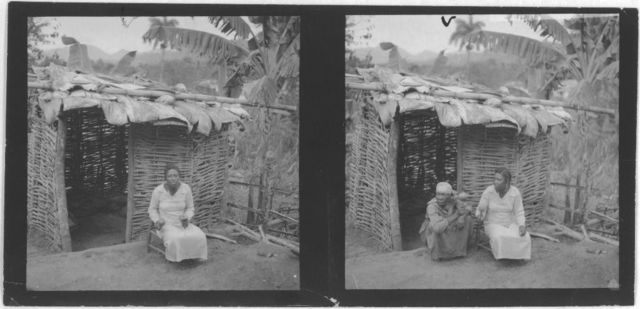 [Two portraits of women seated in front of hut, shaking rattles, taken during visit by Alan Lomax and Mary Elizabeth Barnicle to Andros Island in the Bahamas]