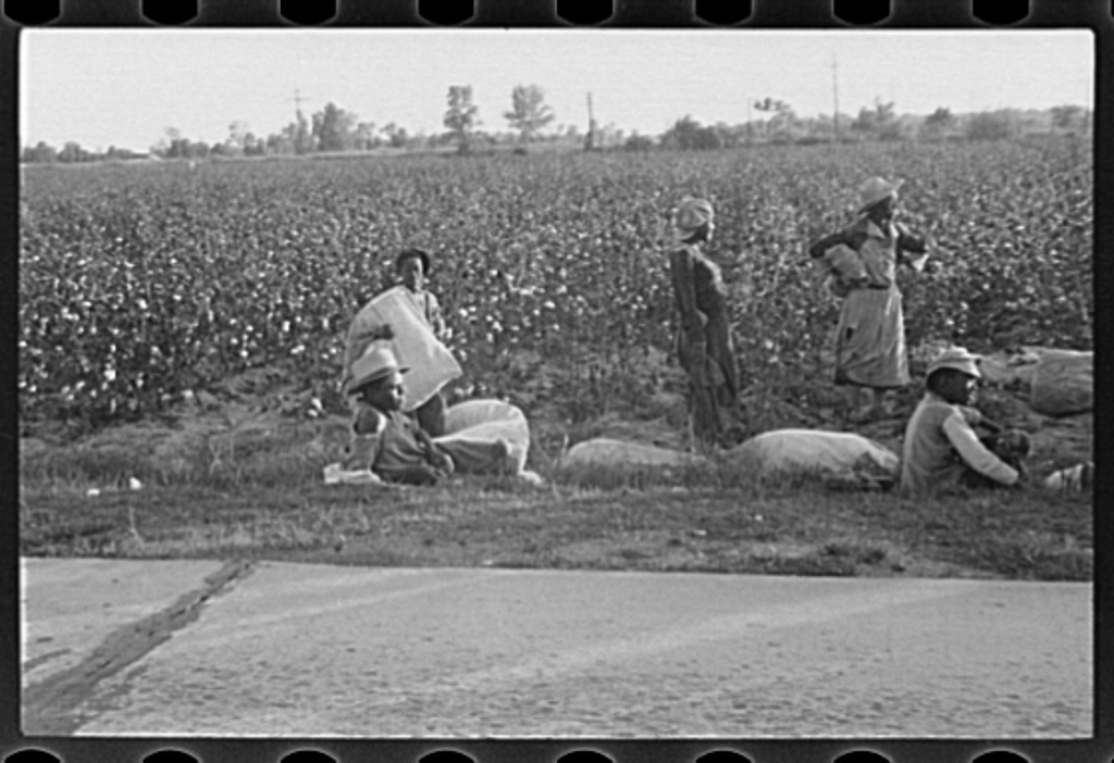 Arkansas photographs - Farm Security Administration / Office of War Information Photograph.