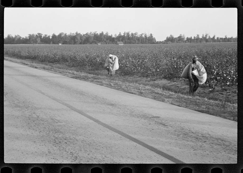 Farm Security Administration / Office of War Information photo.