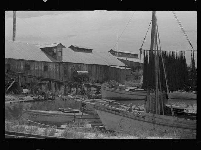 Louisiana photographs - Farm Security Administration / Office of War Information Photograph.