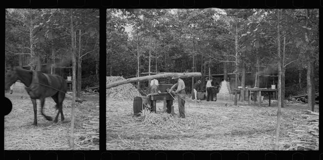 North Carolina photographs - Farm Security Administration / Office of War Information Photograph.