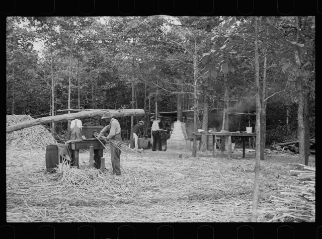 North Carolina photographs - Farm Security Administration / Office of War Information Photograph.