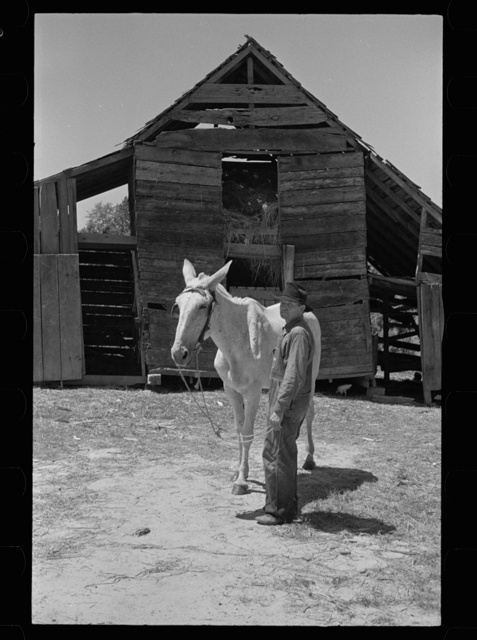 Mississippi photographs - Farm Security Administration / Office of War Information Photograph.