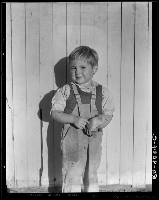 Youngest child of four of rural rehabilitation client. Father assisted in establishing poultry farm. Loan successful. Near San Fernando, California