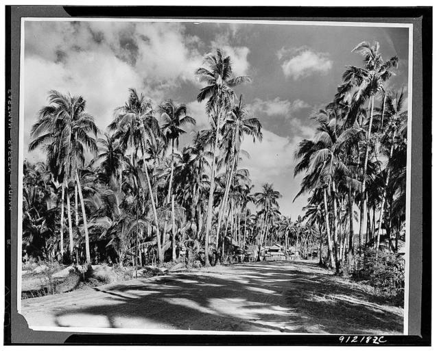 Zamboleo province, Phillipine Islands. A first-class road