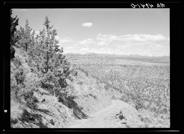 A stock trail built by the Resettlement Administration leading to the Deschutes River. Peaks of the Cascades in the distance. Oregon