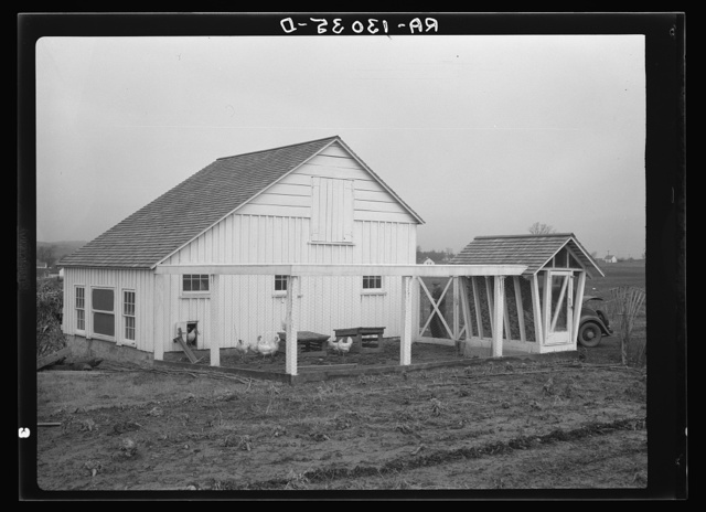 Barn, corn crib, and chickens belonging to Mr. Hardin, a Resettlement Administrator homesteader on the Arthurdale project. Reedsville, West Virginia