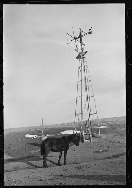 Blind horse and broken windmill on Glen Cook's farm near Smithland, Iowa