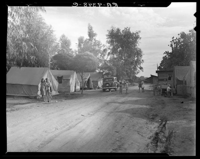 Camp of migratory fruit pickers. Farmington, California