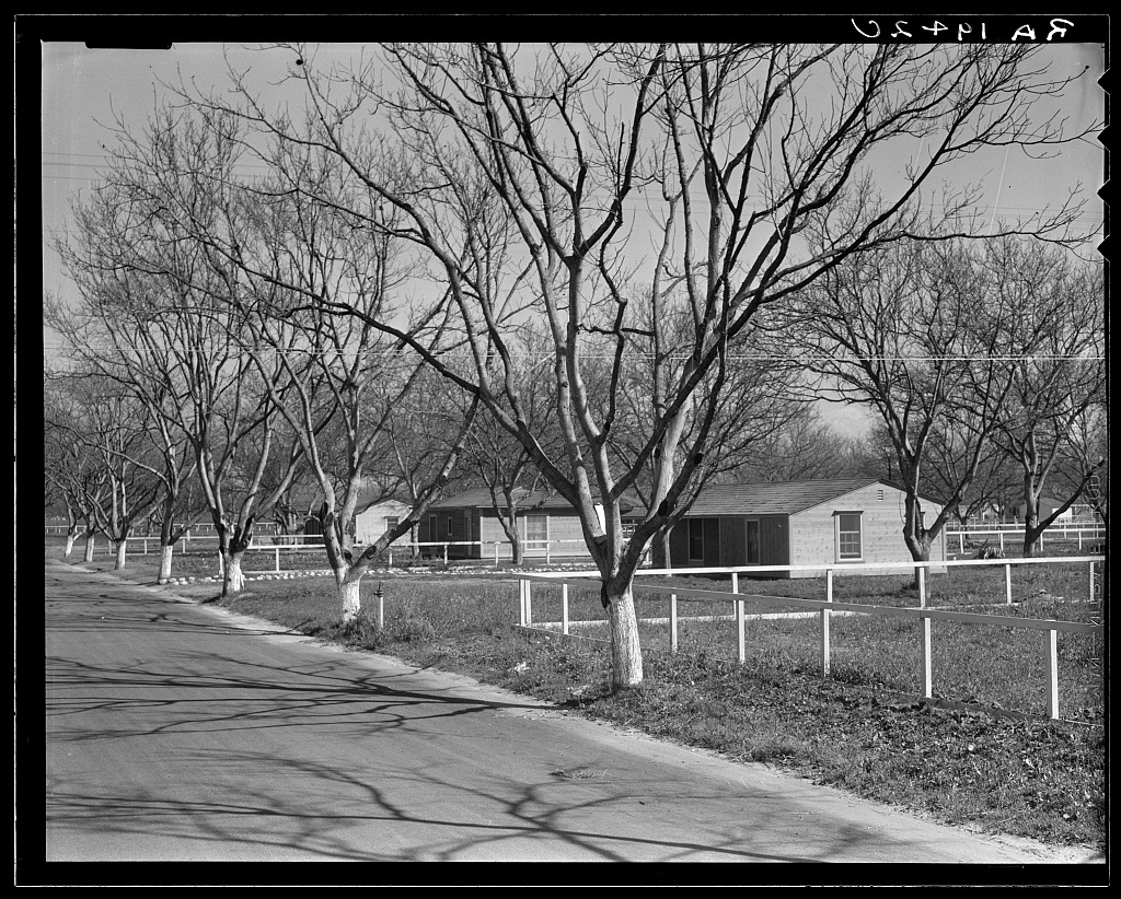 El Monte federal subsistence homesteads. One hundred homes. All occupied, each with nearly an acre of ground. Average yearly income eight hundred dollars. California