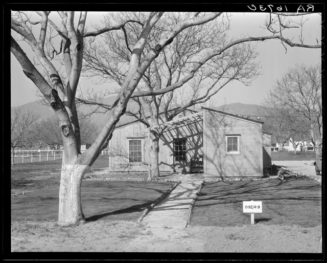 El Monte federal subsistence homesteads. One hundred homes, all occupied, each with three quarters of an acre land. Average family income, eight hundred dollars per annum