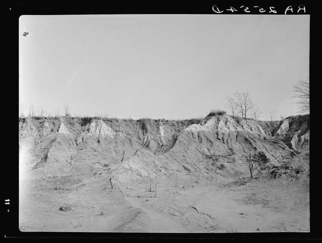 Erosion gully on Coalins Forest and Game Reservation between Tennessee and Cumberland Rivers in Kentucky