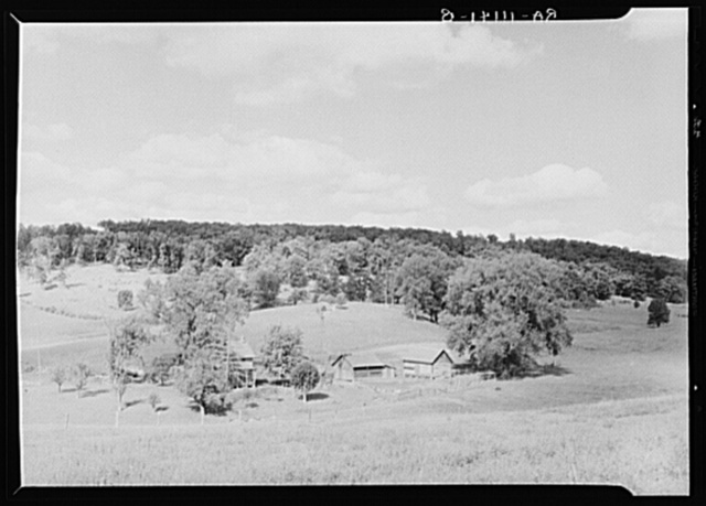 Farm and woodlot in New York State about thirty miles west of Albany. Albany County, New York