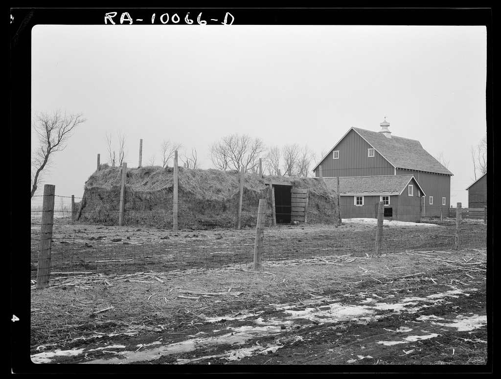 Farm building on Rex Inman farm near Estherville, Iowa. Owned by loan company. Straw barn was built by tenant because of inadequate size of barn recently erected by the loan company