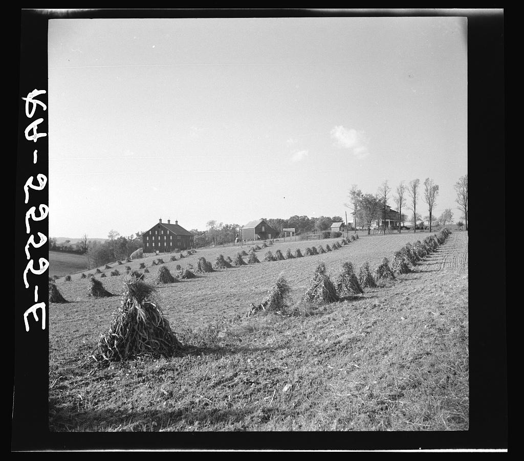 Farm near Hagerstown, Maryland