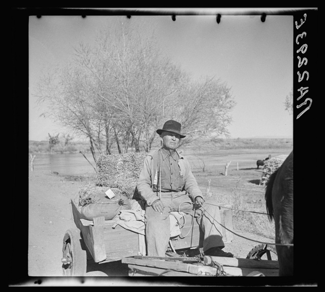 Farmer of the Rio Grande Valley coming home from town. Dona Ana County, New Mexico