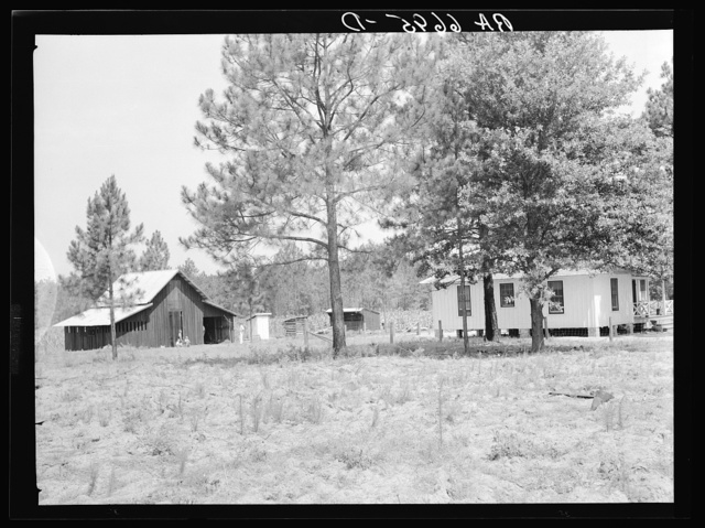 """Grady Watson was moved from a shack in Irwinville to this home and farm unit in Irwinville Farms rural resettlement project. This view shows the Federal Emergency Relief Administration (FERA) house and the """"Bryan"""" barn"""