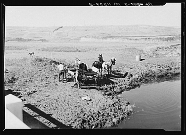 Hauling water for stock near Dickinson, North Dakota