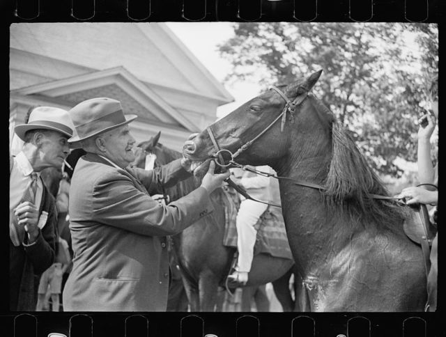 Horse judging at the fair, Albany, Vermont