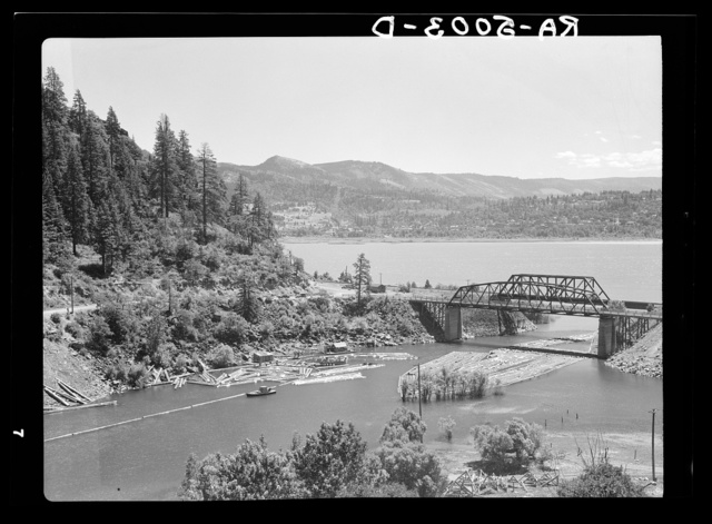 Logs on White Salmon River at its junction with the Columbia River. Oregon