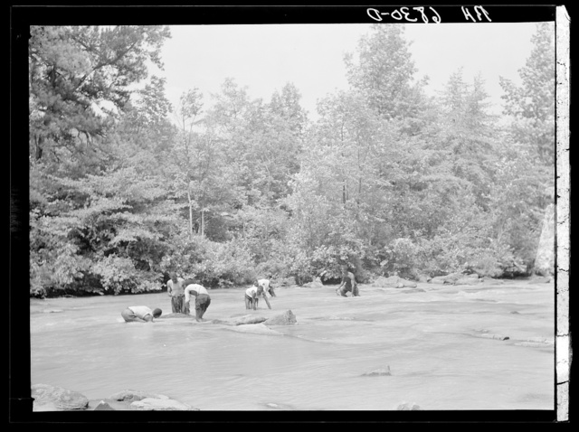 Negroes catching small catfish with their hands. Bait to be used in shoals of Little River near Eatonton, Georgia